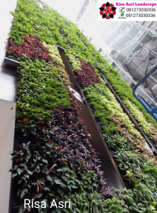 Jasa Pembuatan Vertical Garden Tegal Slawi, Tukang Taman Vertikal