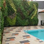 Jasa Pembuatan Vertical Garden Samarinda, Tukang Taman Vertikal