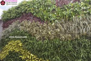 Jasa Pembuatan Vertical Garden, Tukang Taman Vertikal Profesional & Design Vertical Green Indonesia surabaya gresik sidoarjo