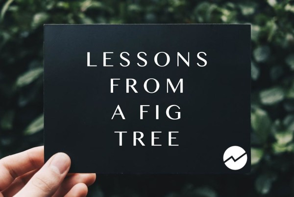 Image of Lessons From a Fig Tree