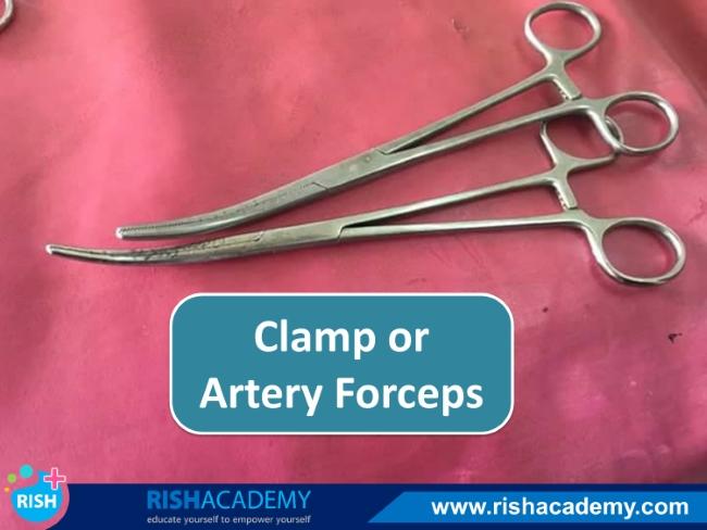 Instruments obstetrics gynecology