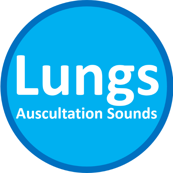 lung auscultation sound