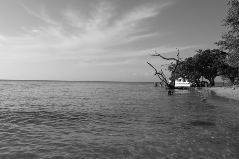 Page 49 – Ah Trini Travelogue