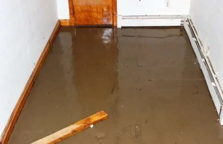 How do I disinfect my basement after a flood