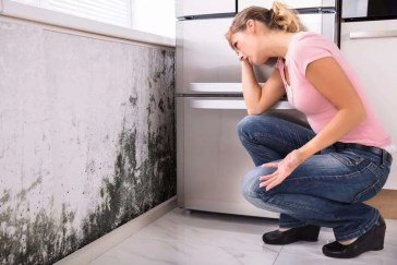 What kills mold in the air