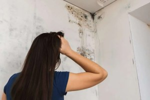 How do you detect mold in a house