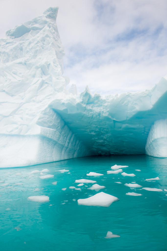 A giant iceberg. They were everywhere.