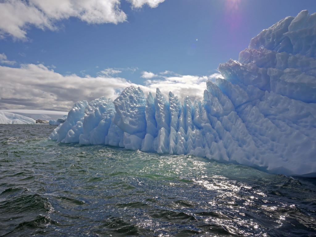 The icebergs in Antarctica are stunning.