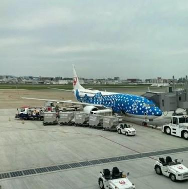 【ジンベエジェット】JTA(NU)53便 福岡空港~那覇空港 クラスJ搭乗記。当日アップグレードやお得な予約方法もご紹介。