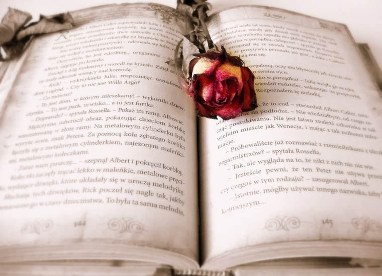 Gli agenti letterari: un libro... e una rosa