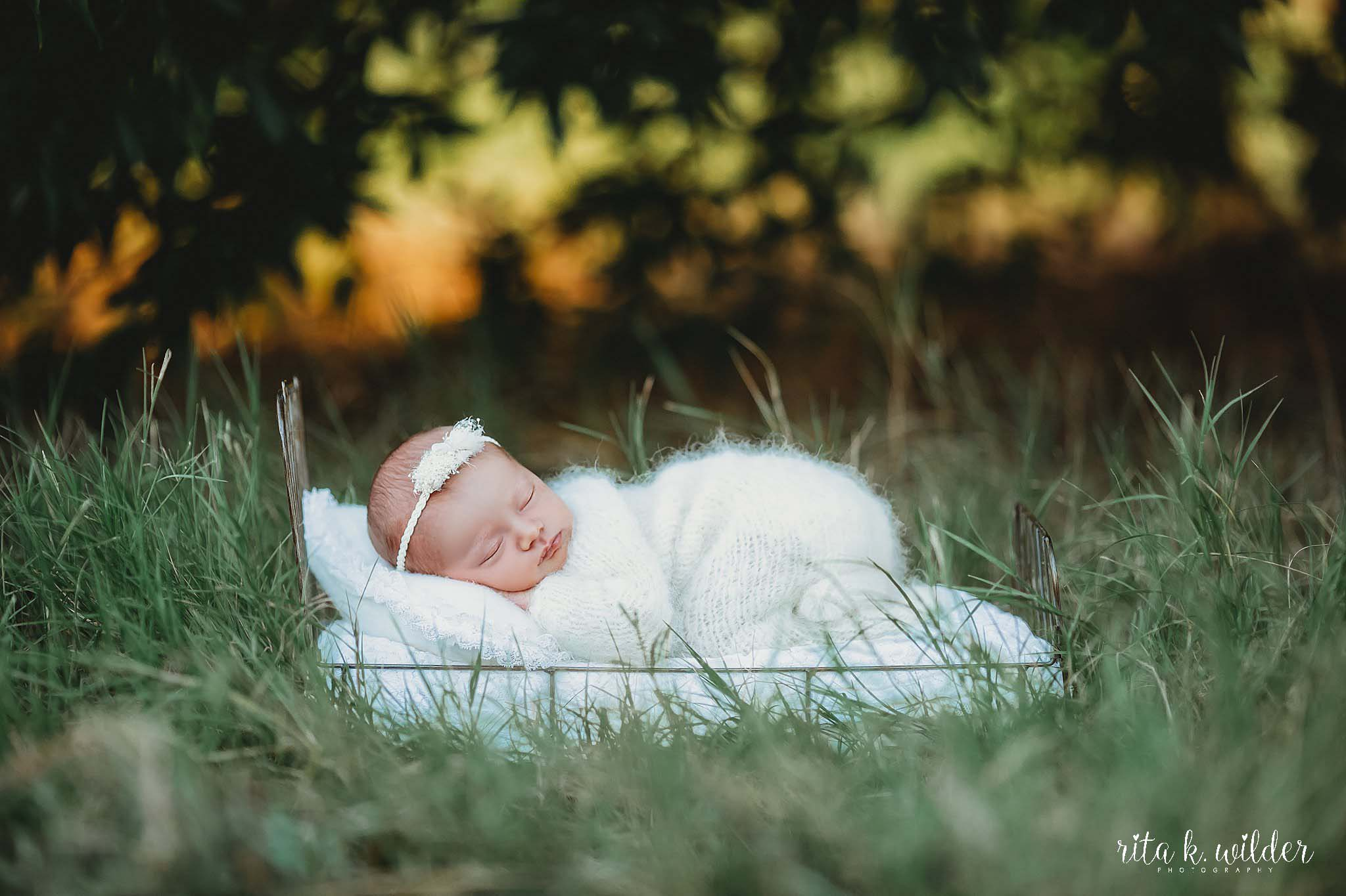 Newborn Photographer Dallas