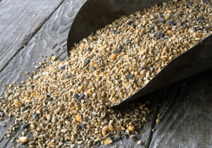 Non-GMO Turkey & Game Bird Feed