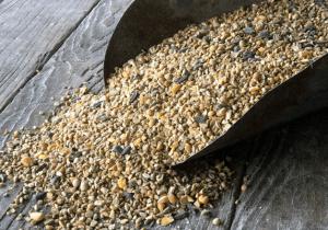 Non-GMO Turkey & Game Bird Feed
