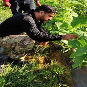 MS Dhoni To Export Vegetables Grown In His Farmhouse To Dubai (3)