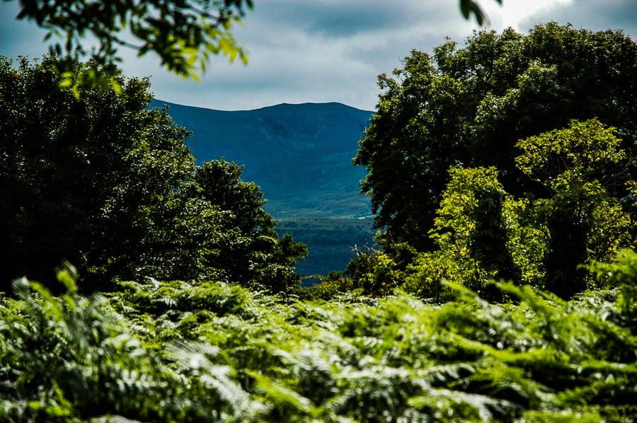 Ireland, Secret Island