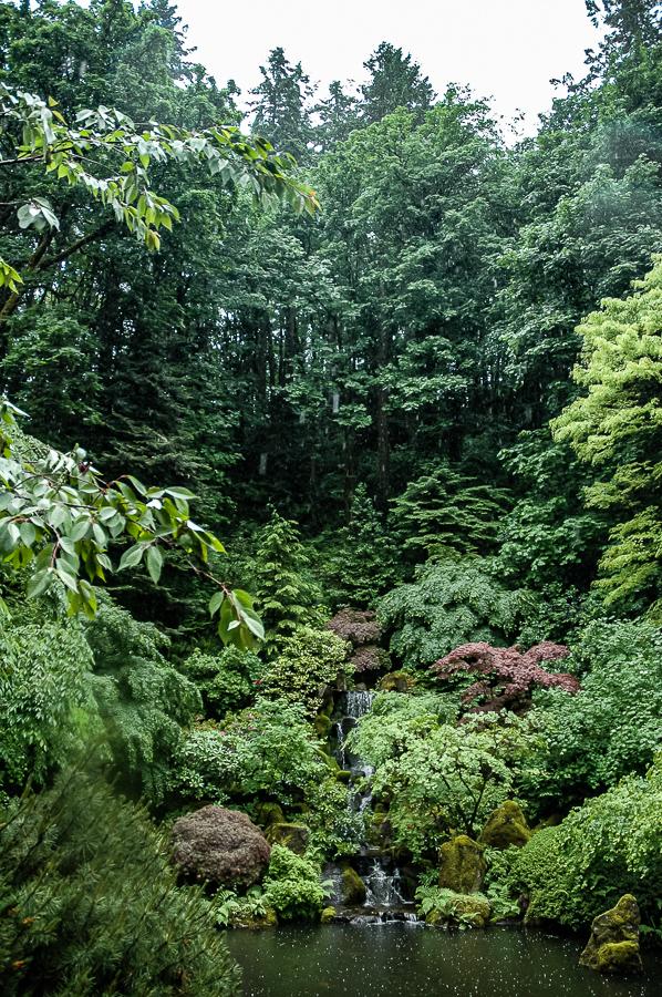Portland, Oregon Japanese Gardens Waterfall Rain Falling
