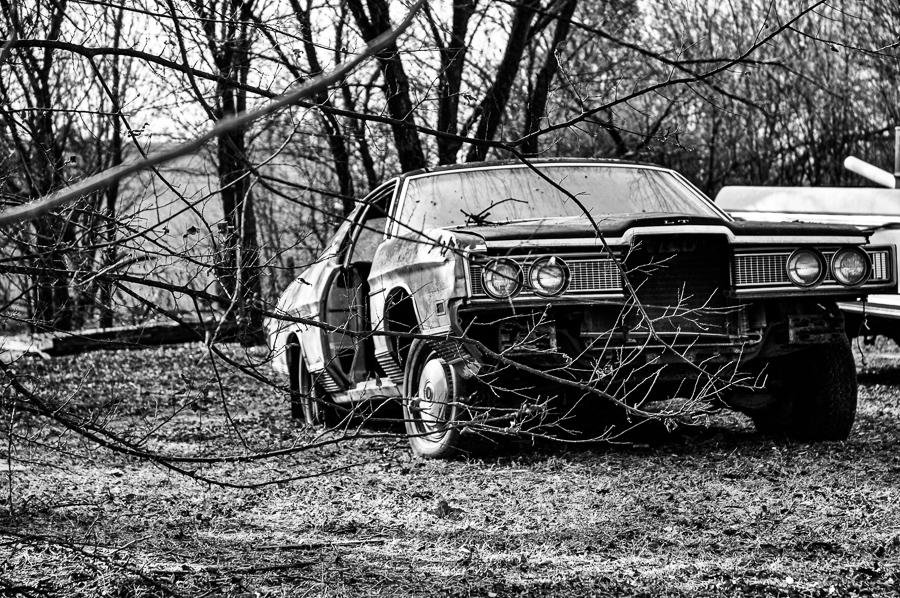 Roadside Relics - Ruined Car Through Skeleton Trees