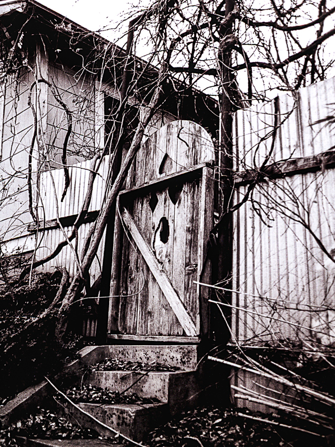 Roadside Relics - Black Gate, Vines Withering, Winter