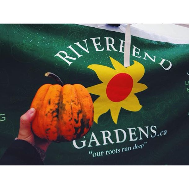 It's a cold one out there, but the squash is pretty to look at ️ #Riverbendgardens
