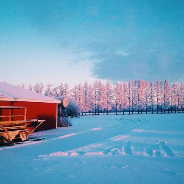 Winters on the farm are quiet; but the scenery is always spectacular ️