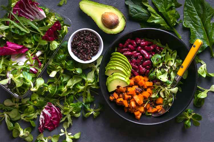 what is a vegetarian diet