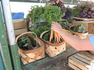 2013 0615 farm stand schmitt vegetables