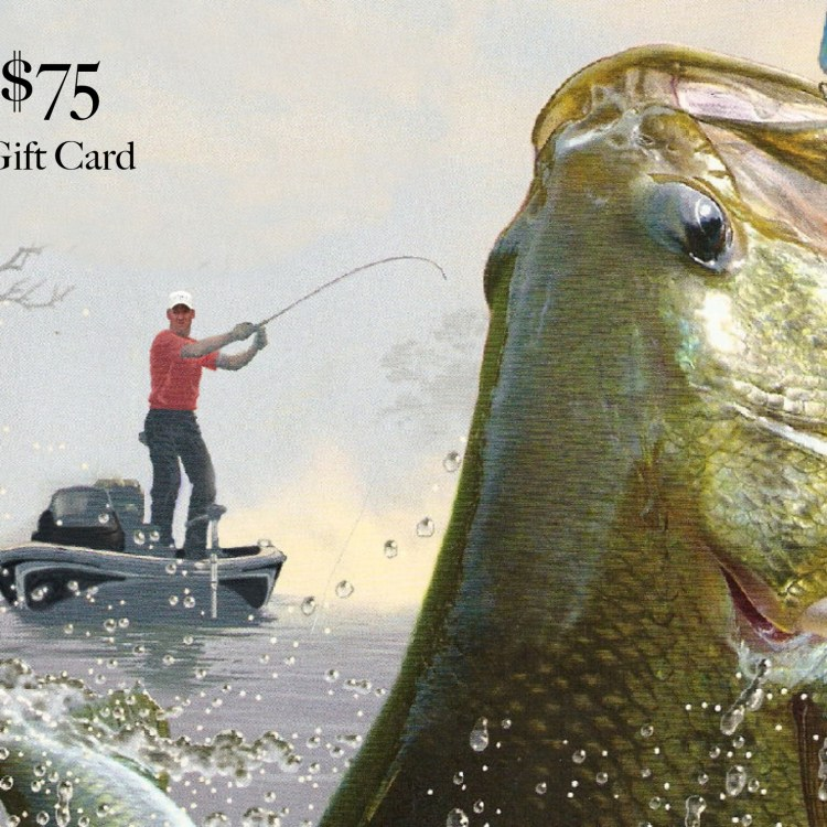 75-gift-card-for-site