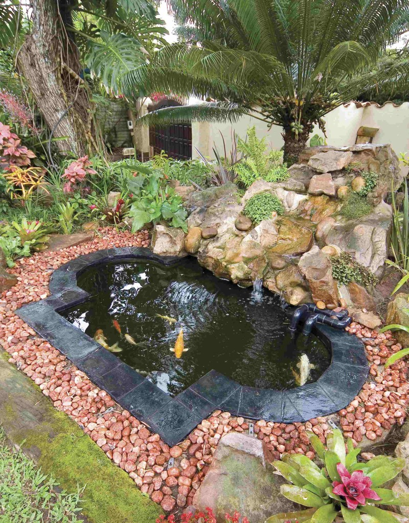 Above Ground Fish Pond Designs