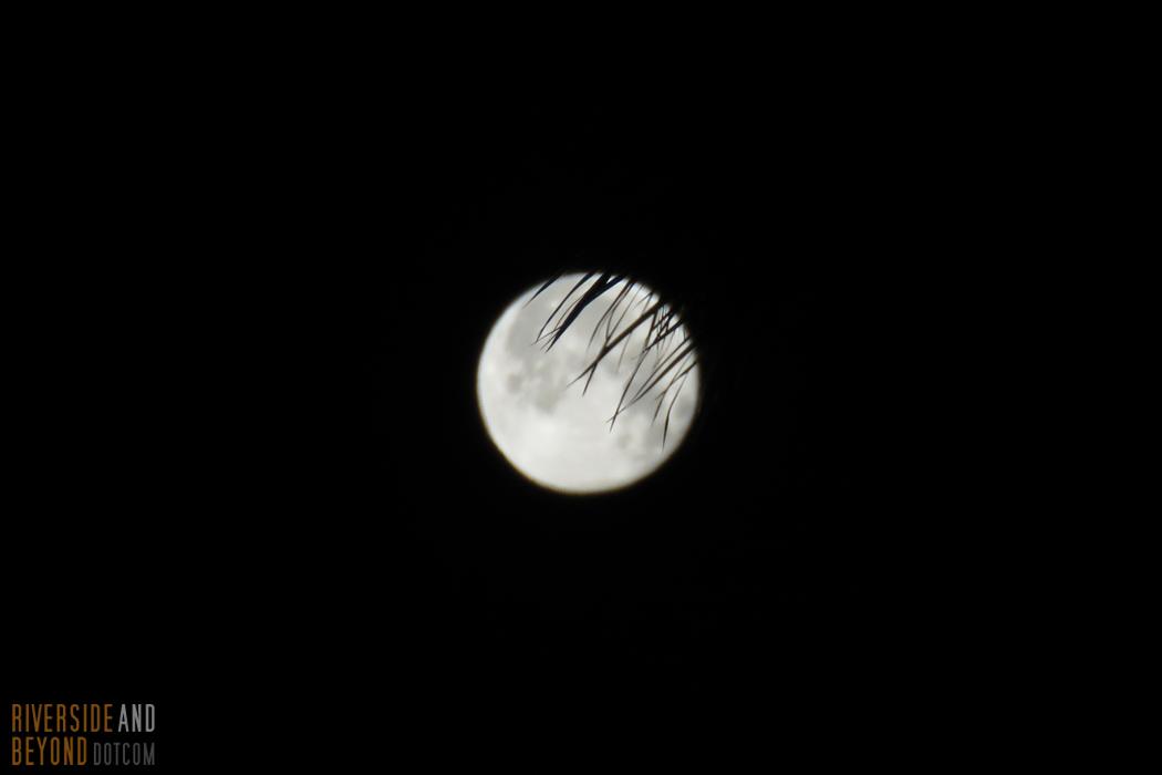 Early morning full moon