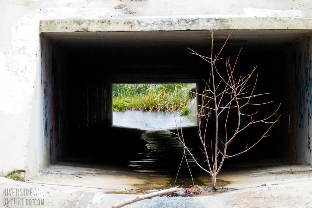 San Juan Creek