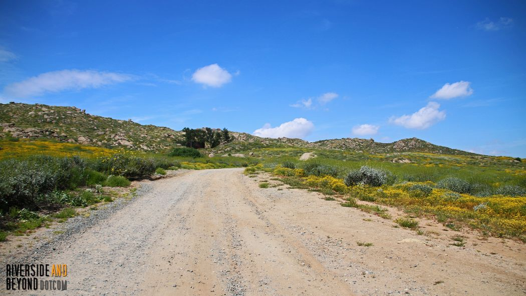 Dirt Road leading to the horse camp.