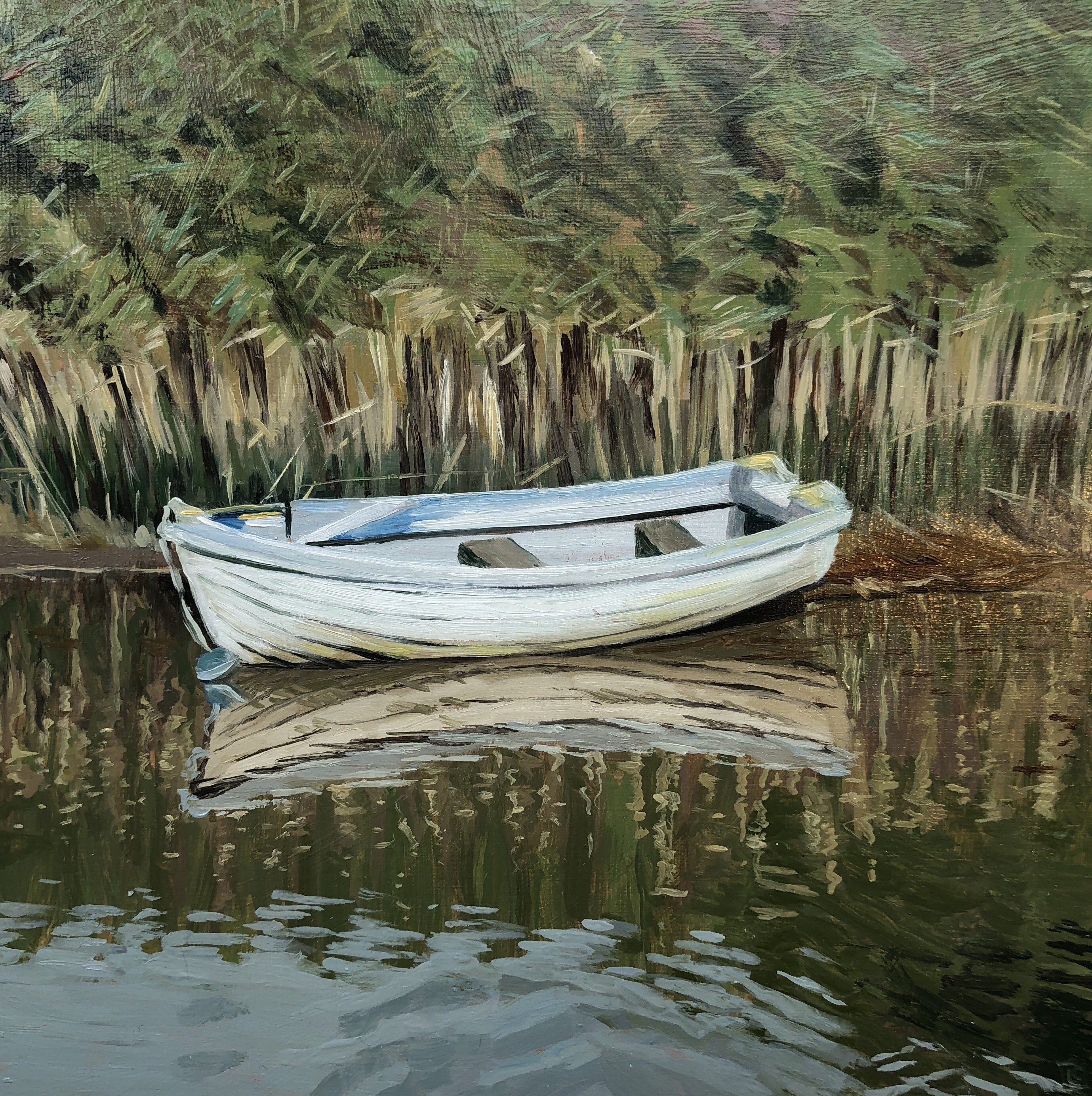 White Boat and Reeds by Lesley Dabson
