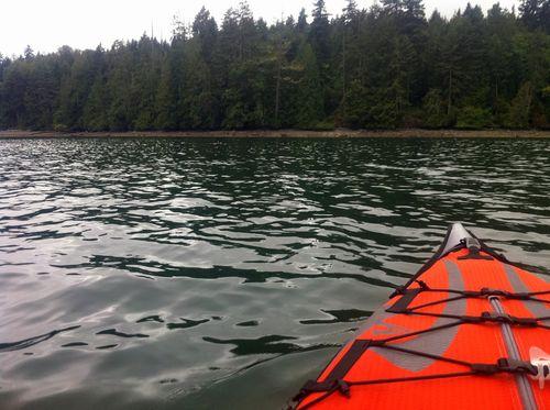 20100809_kayak_sealrock