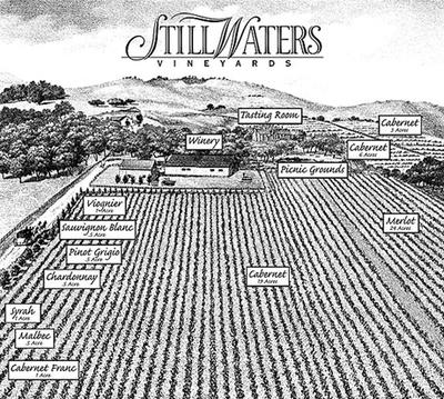 Still-Waters-Vineyards-illustration