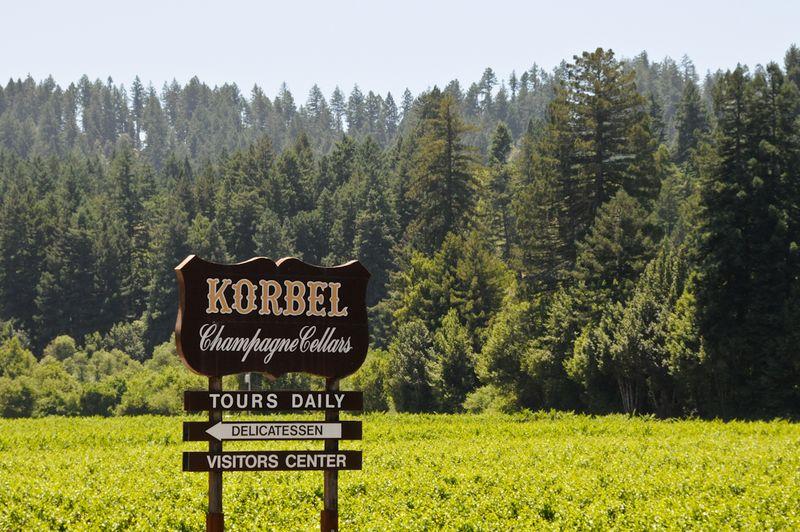 Korbel-1