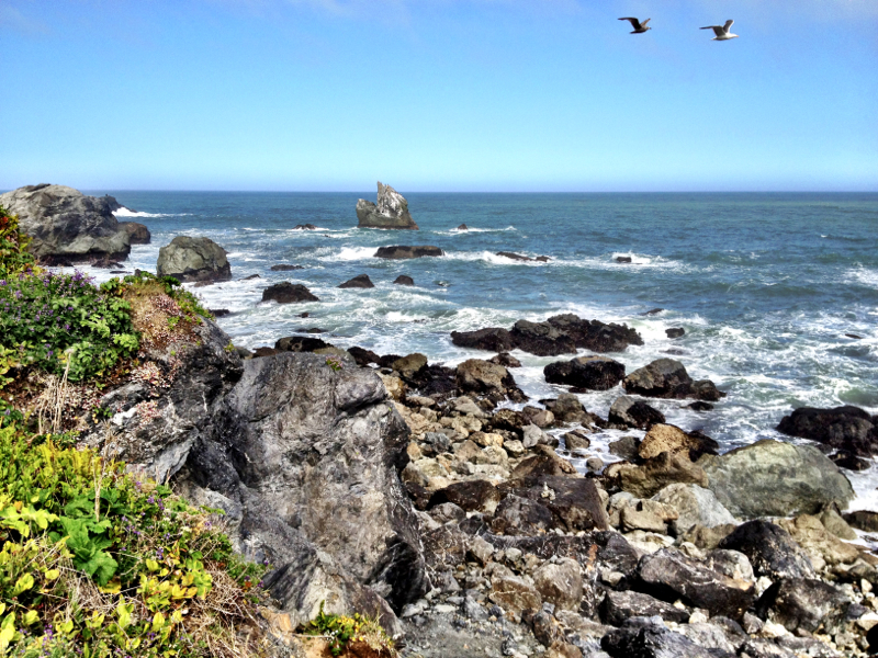 Patrick's Point State Park, CA - 20