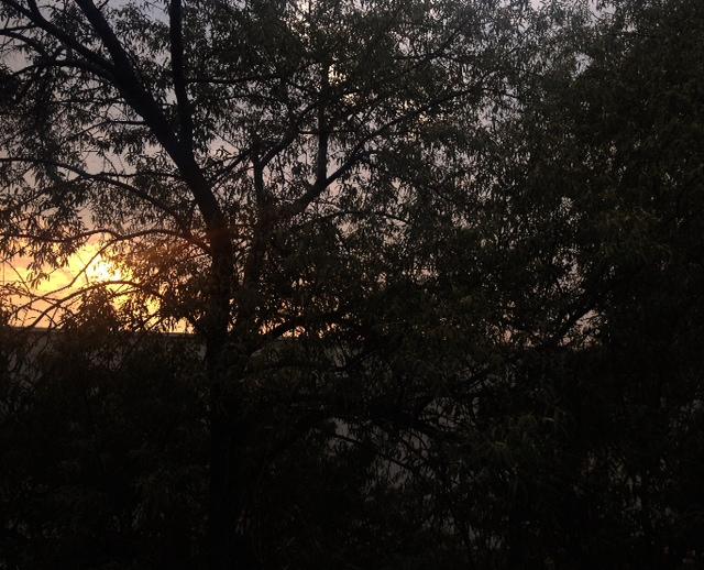 Sunrise_pvccutter