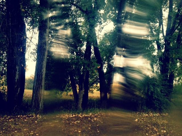 Rain2_cherrycreek