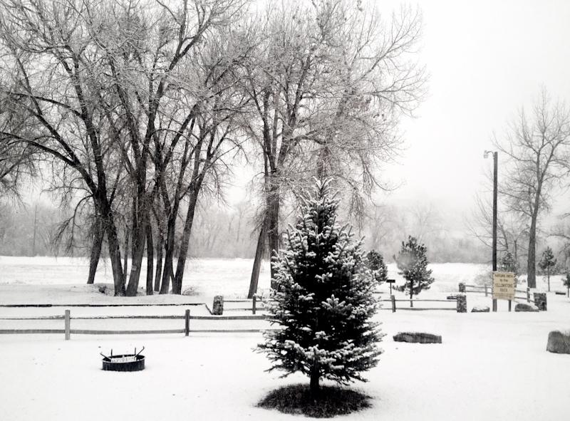 Billings_snow-1
