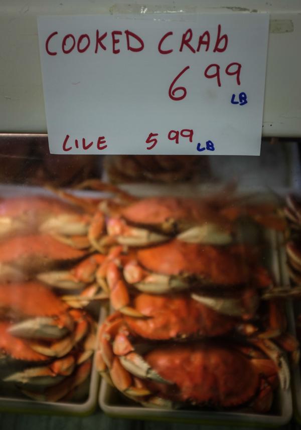Brookings_crabfest-4820