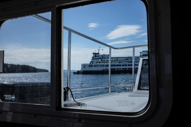 Newboat-2158