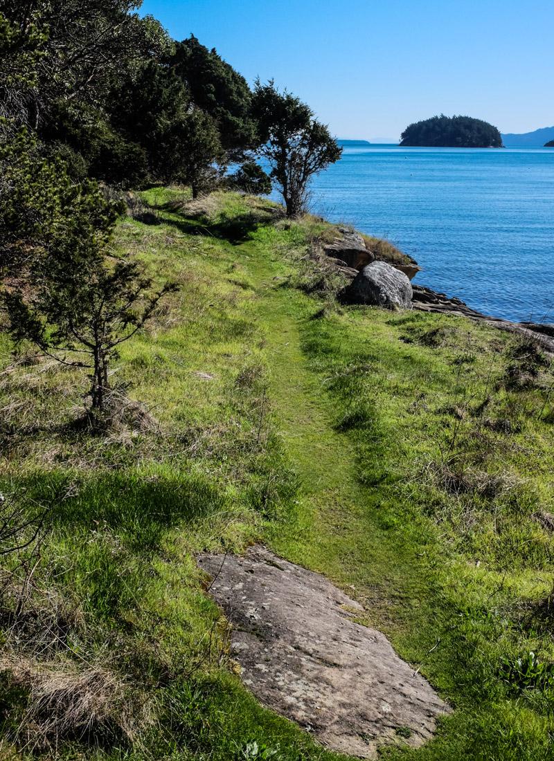 Sucia_shallowbay_hike-4868