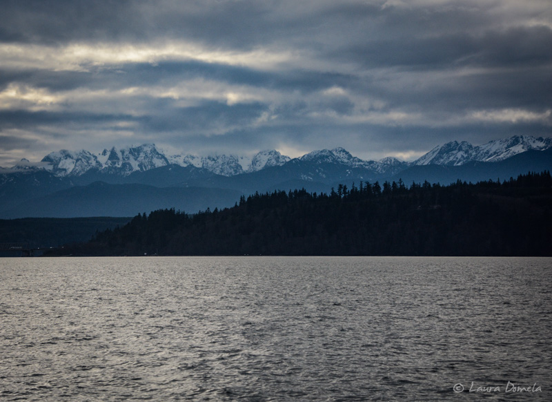 Pugetsound-0274