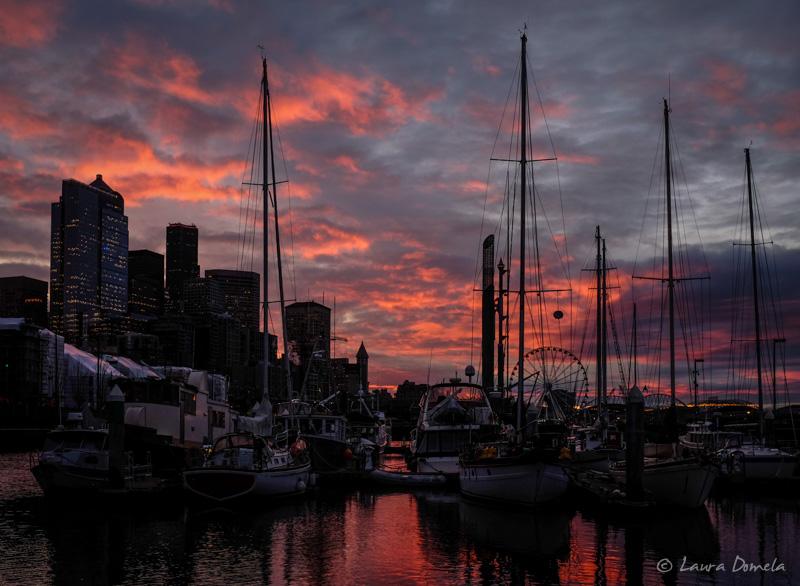 Seattle-5843