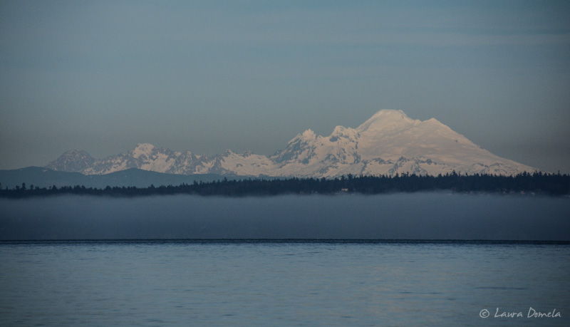 Northpugetsound-0291
