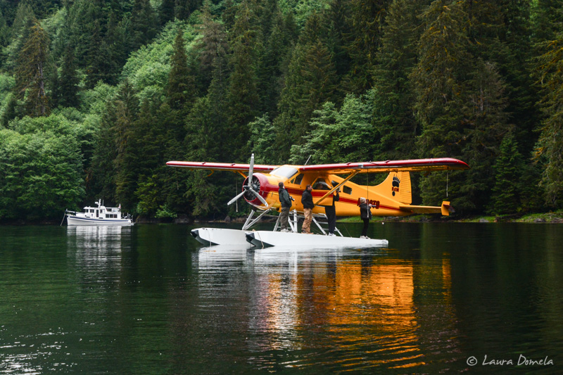 Walkercove_floatplane-1349