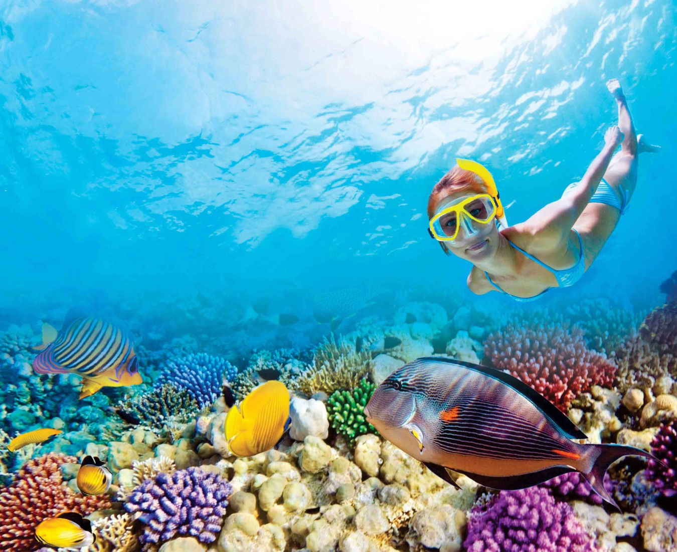 Snorkeling in Cancun | The best Cancun Snorkeling | Riviera Maya Snorkeling