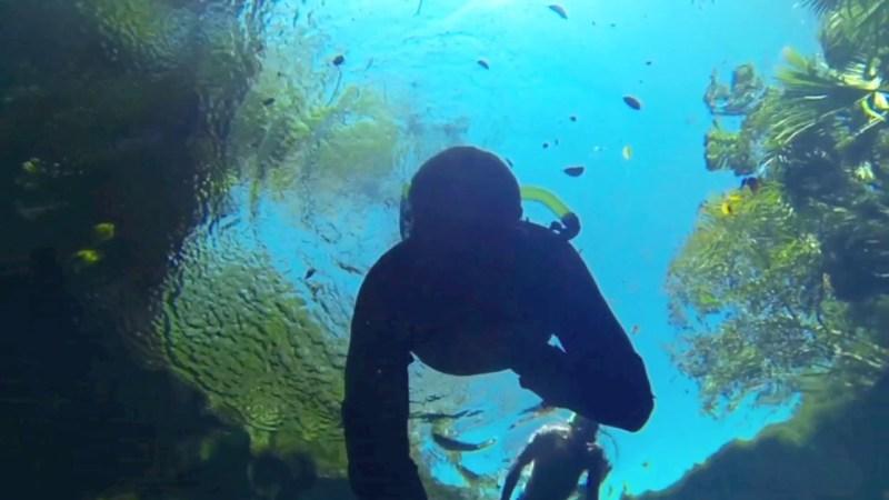 XpuHa Snorkeling Riviera Maya