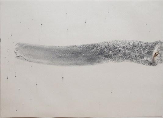 Omar Galliani, matita nera su carta e anello d'oro