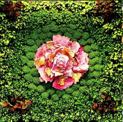 Matteo Negri, Stampa Splendida villa con giardino, viste incantevoli, a cura di Daniele Capra (1)